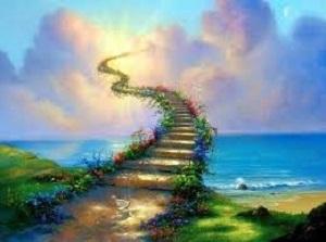 harmony cesta