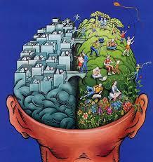 mozog hemisfery