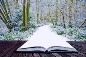 mudrost knih a nasa cesta