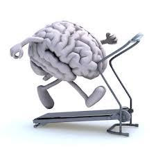 fitness mozgu