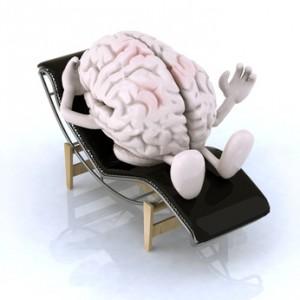 mozog fotolia