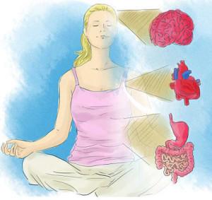spojenie mozog srdce telo