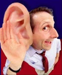 velke ucho