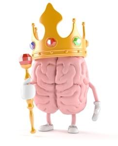 kral-mozog