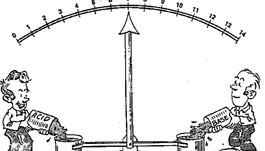 acidobazicka-rovnovaha